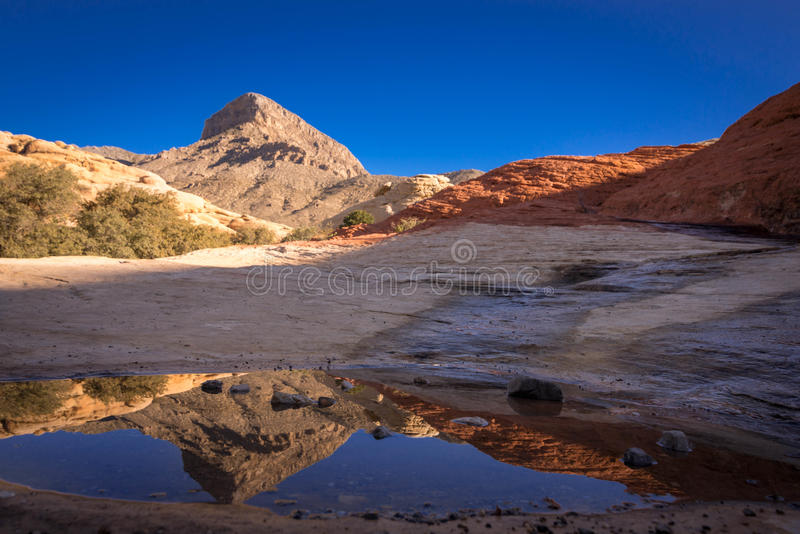 Red Rock Canyon. The reflection of the rock formations in the puddle taken at Red Rock Canyon royalty free stock photo