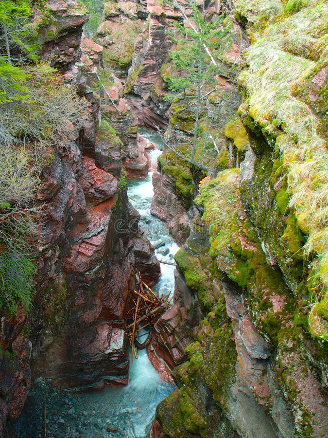 Red Rock Canyon, Waterton Lakes National Park. A log jam sits caught in the narrow canyon. There are many hiking trails in the area of Red Rock Canyon in royalty free stock photos