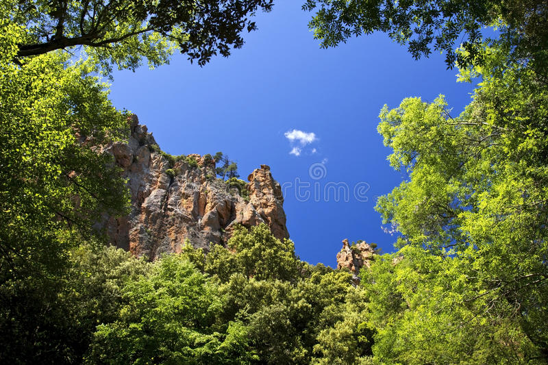Red Rock Cliffs above the Canopy of the Blavet Gor stock photo