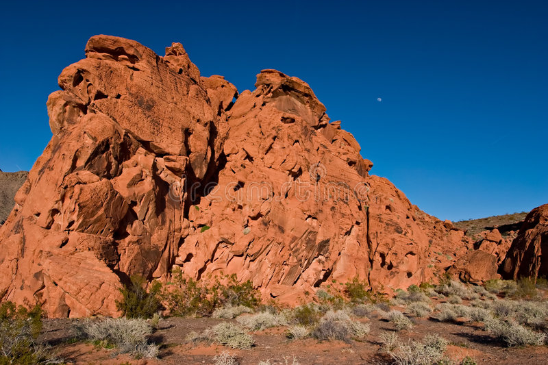 Download Red rock and moon stock photo. Image of nature, flora - 4348448