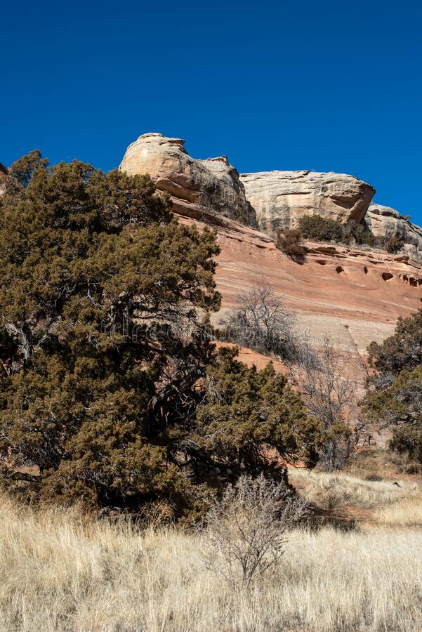 Red Rock Sandstone Formation in a Canyon stock photography