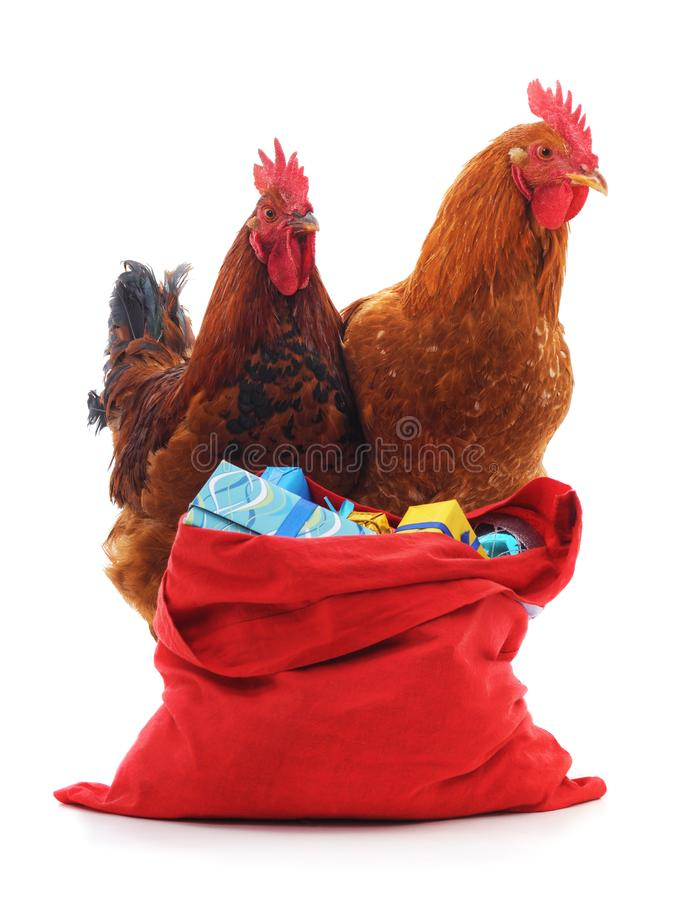 Red roosters and bag of gifts. Red roosters and bag of gifts on a white background royalty free stock photo