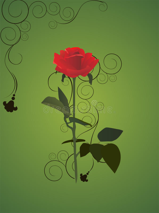 Download Red rose stock illustration. Image of scroll, element - 12368462