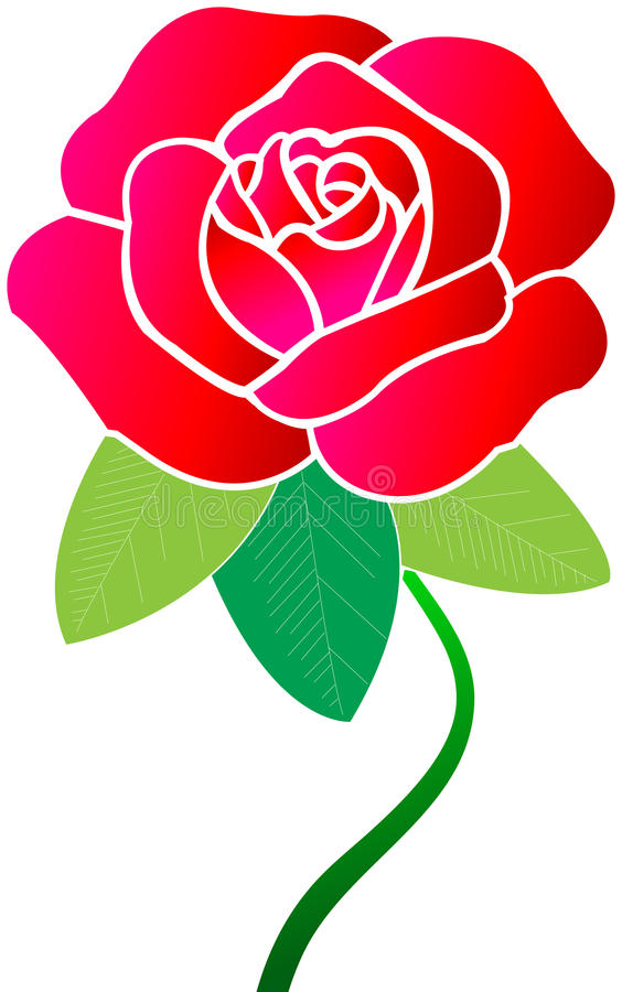 Download Red rose stock illustration. Image of affection, beautiful - 15689679