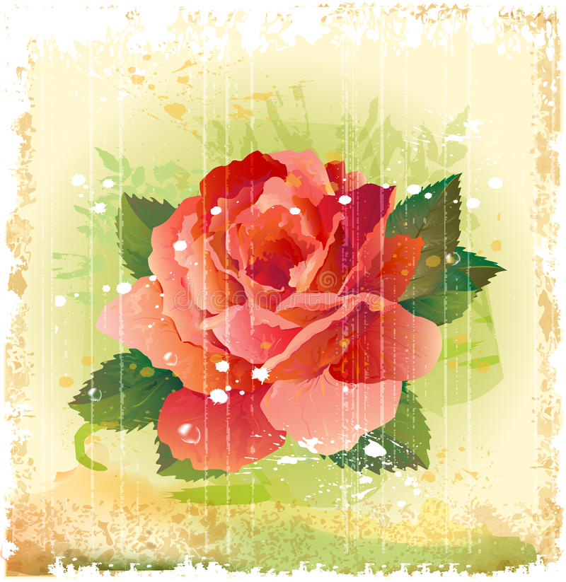 Download Red rose stock vector. Image of invitation, card, blossom - 25342758