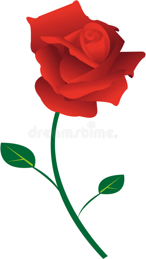 Free Red Rose Royalty Free Stock Images - 7620089