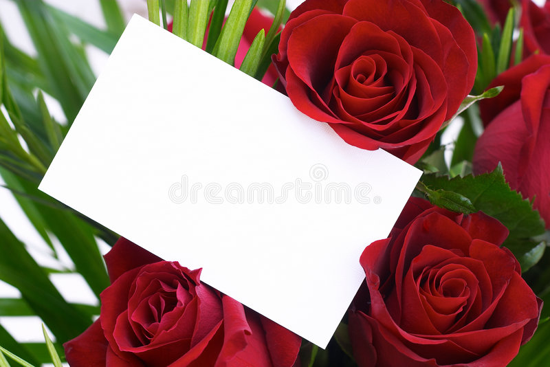 Red rose 9. Red roses with a blank card, the whole card showing