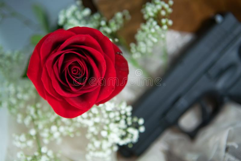 Red Rose and Babys Breath with a Gun royalty free stock photos