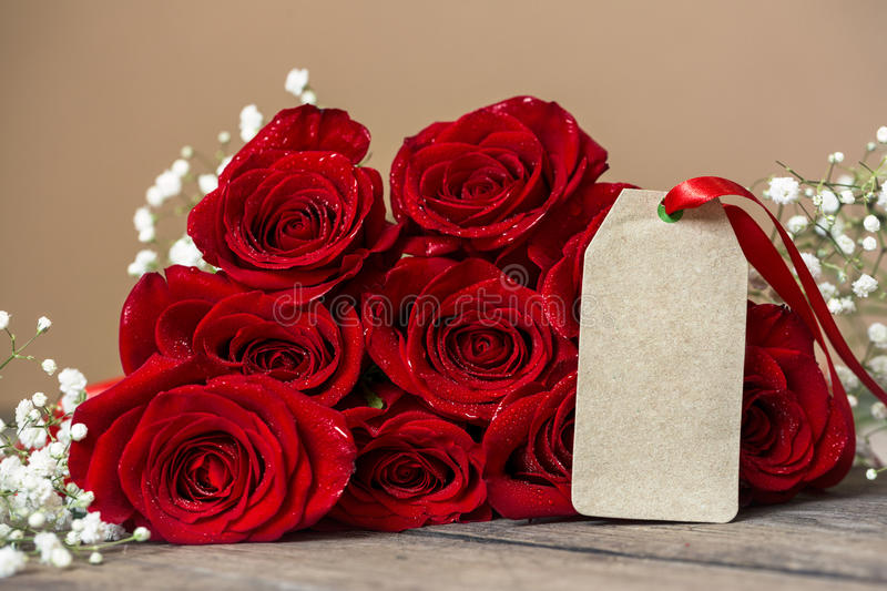 Red rose and blank gift card for text royalty free stock image
