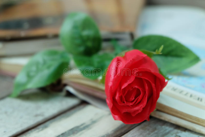 Red rose and the book stock photos