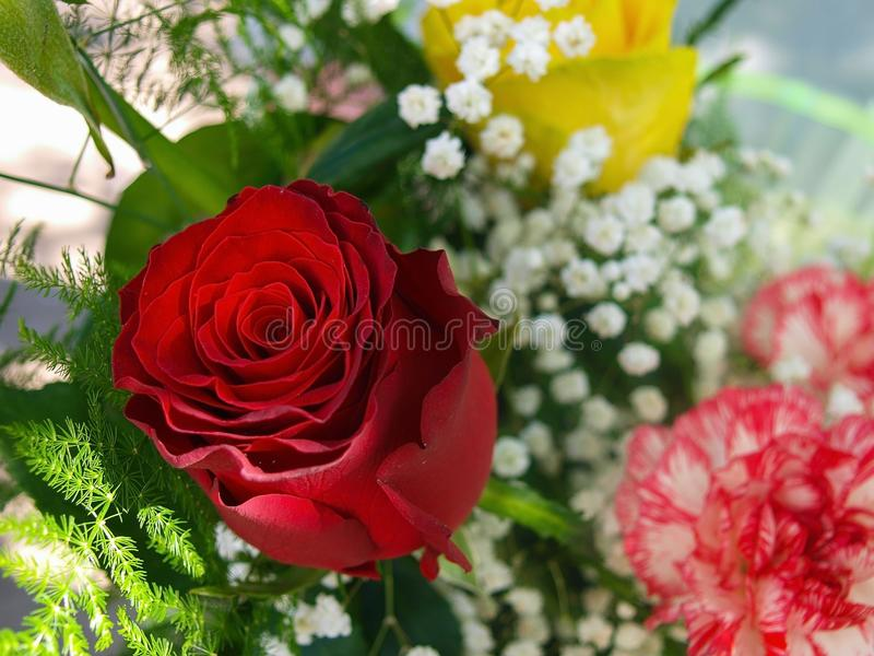 Red rose in the bouquet. royalty free stock photos