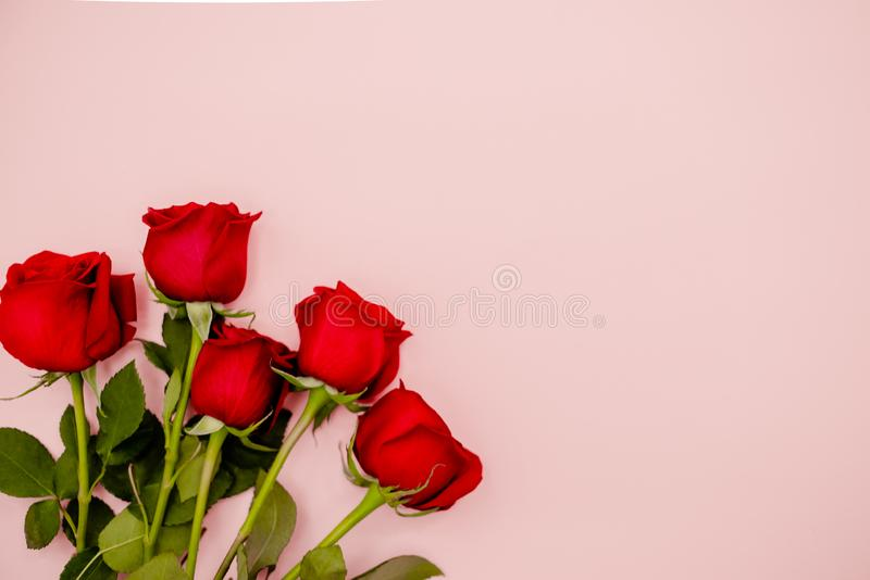 Red rose bouquet of flowers on a pink background. 8 march holiday concept. Concept. Top horizontal view royalty free stock photos