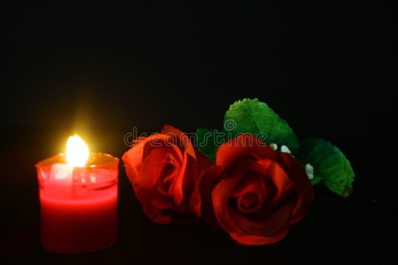 Red Rose And Candle Burning For Decoration Valentine Day Photoshoot Stock Image - Image of image ...