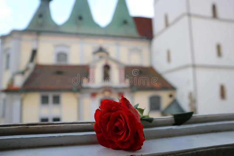 Red rose and church royalty free stock images