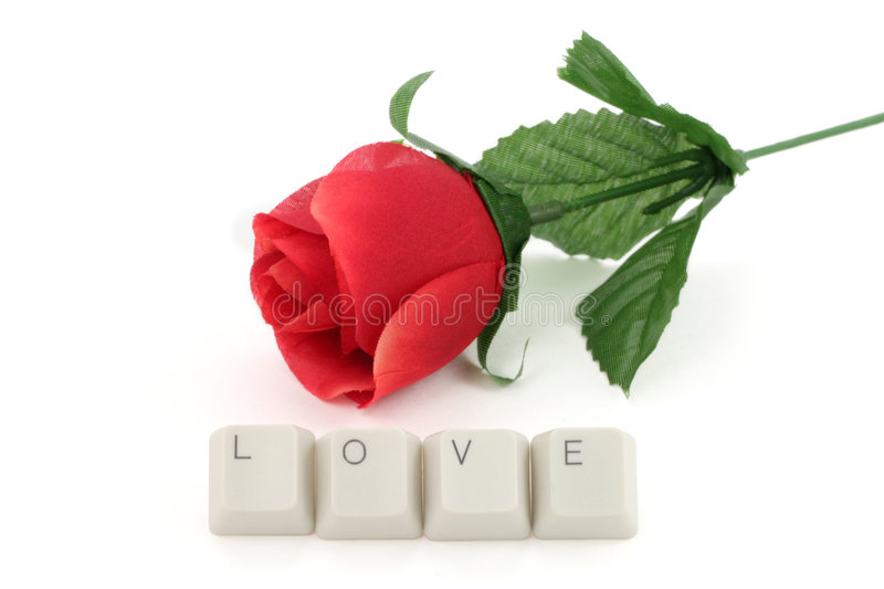 Red rose and computer keys royalty free stock photography