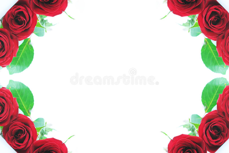 Red rose corner borders. Beautiful red roses adorn the corner borders with plenty of type space in center. Perfect for Valentine's and Mother's Day or weddings vector illustration