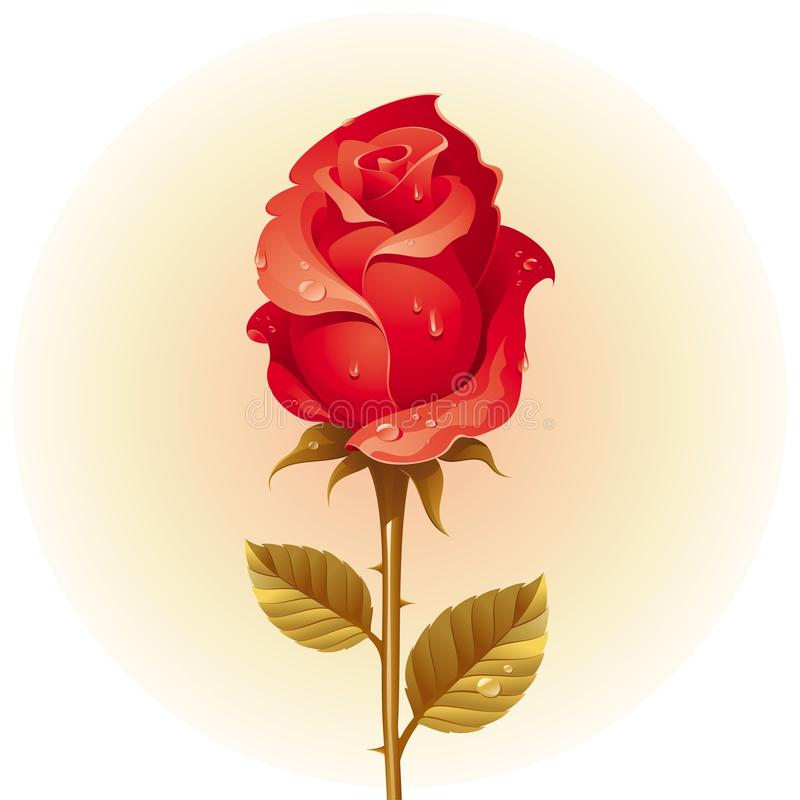 Red rose with dew stock illustration