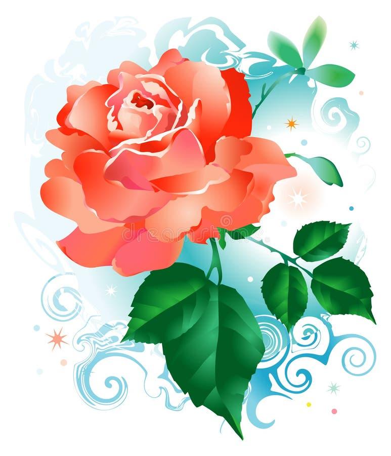 Red_rose_flower ilustracji