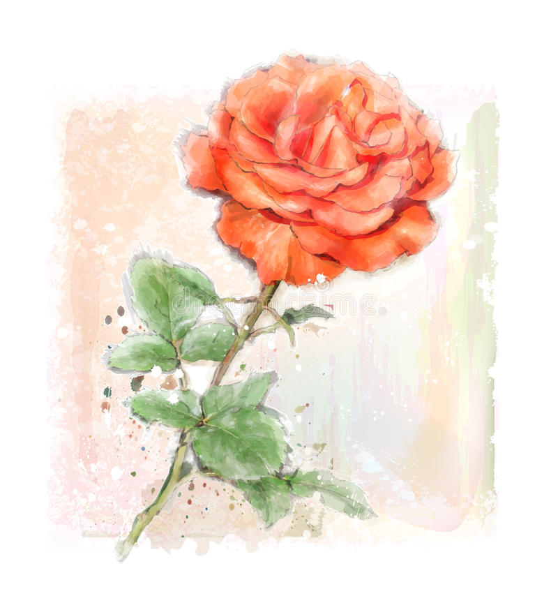 Red rose. Imitation of watercolor illustration of red rose stock illustration