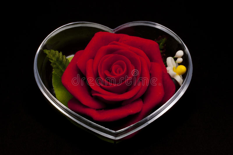 Red Rose Inclosed In Heart Shape Casing Stock Photo