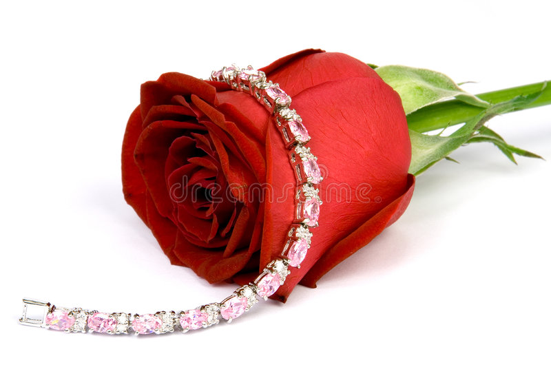 Red rose and Jewel 2 royalty free stock photos
