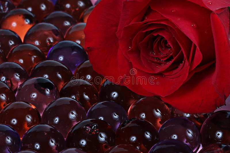 Download Red Rose And Marbles Royalty Free Stock Photo - Image: 13244865