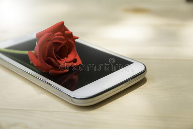 red rose on mobile phone with blank screen on wooden table background royalty free stock images