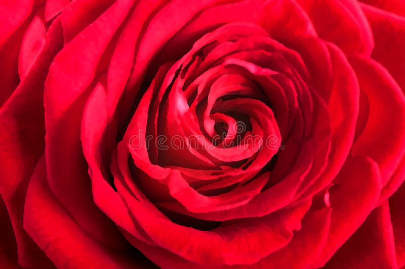 Red rose petals as background royalty free stock photo