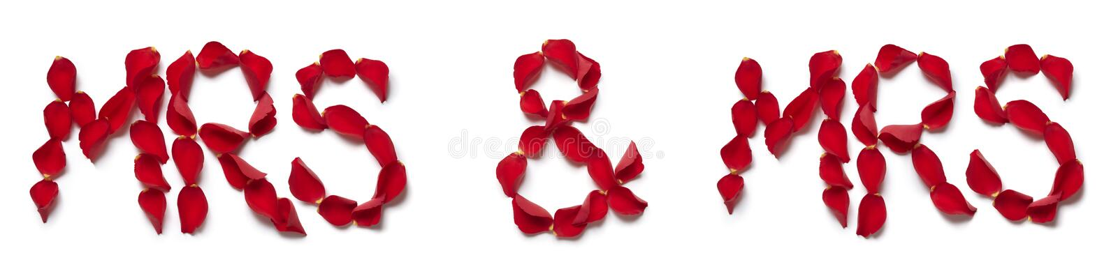 Red rose petals spelling mrs and mrs. On white background stock photography