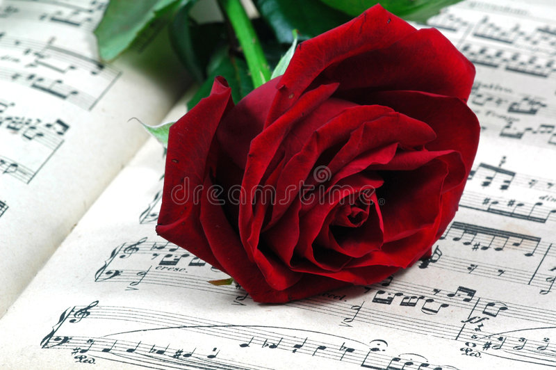 Red rose and sheet music royalty free stock image