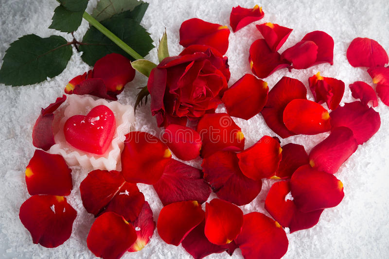 Download Red Rose In The Snow With Heart Candle With Petals Stock Photo - Image: 83716447
