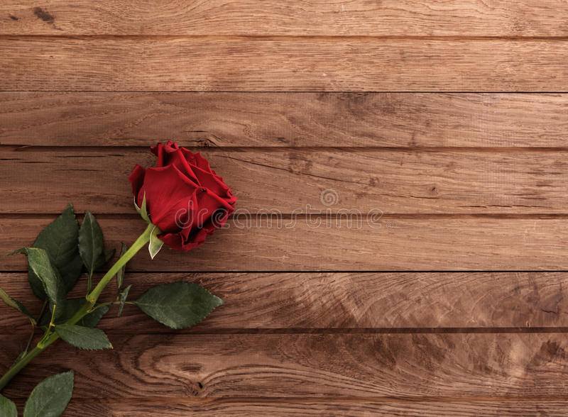 Red rose on table. Single red rose on rustic wooden table with empty space royalty free stock photos