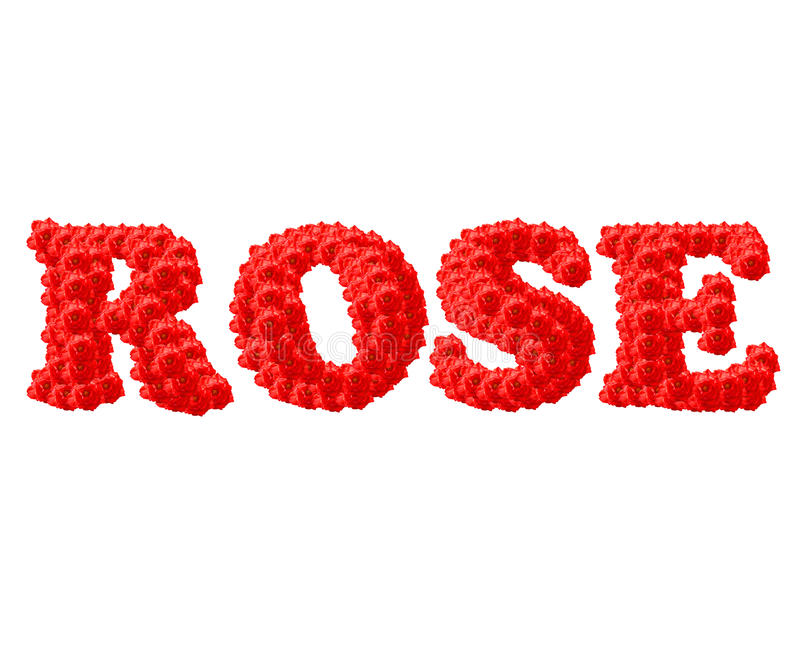 Download The Red Rose text stock image. Image of green, open, gift - 26083445