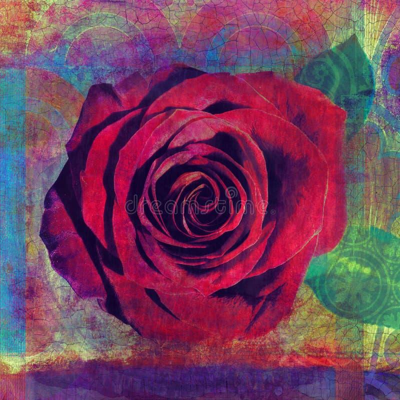 Red Rose Photo Illustration royalty free stock image