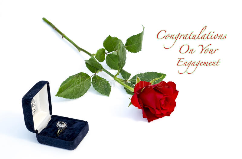 Red Rose. View of a single red rose on a white background and a box with a ring royalty free stock images