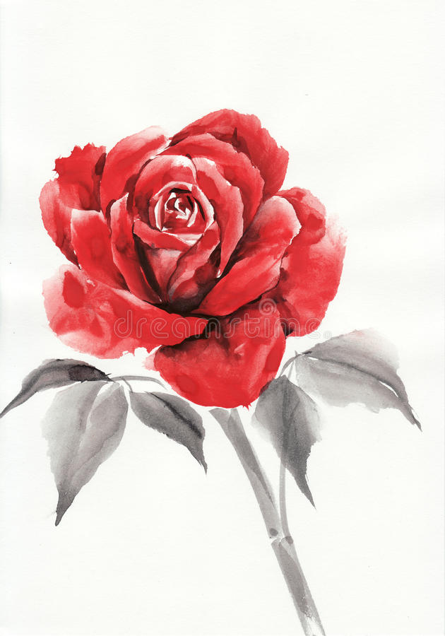 Red Rose Watercolor Painting Stock Illustration