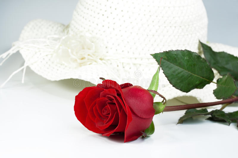 red rose & white hat royalty free stock photos