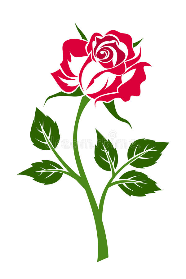 Free Red Rose With Stem. Royalty Free Stock Images - 32718419
