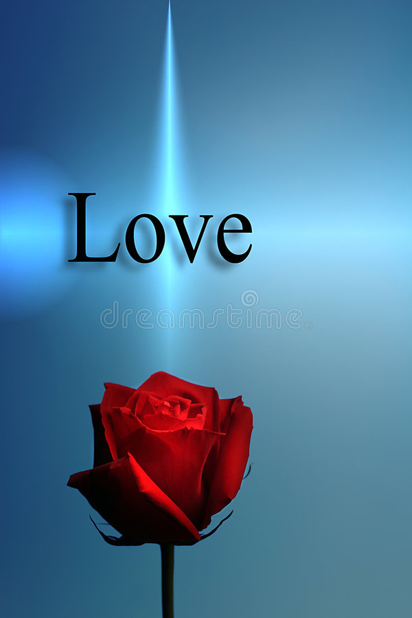 Red Rose and The Word Love vector illustration