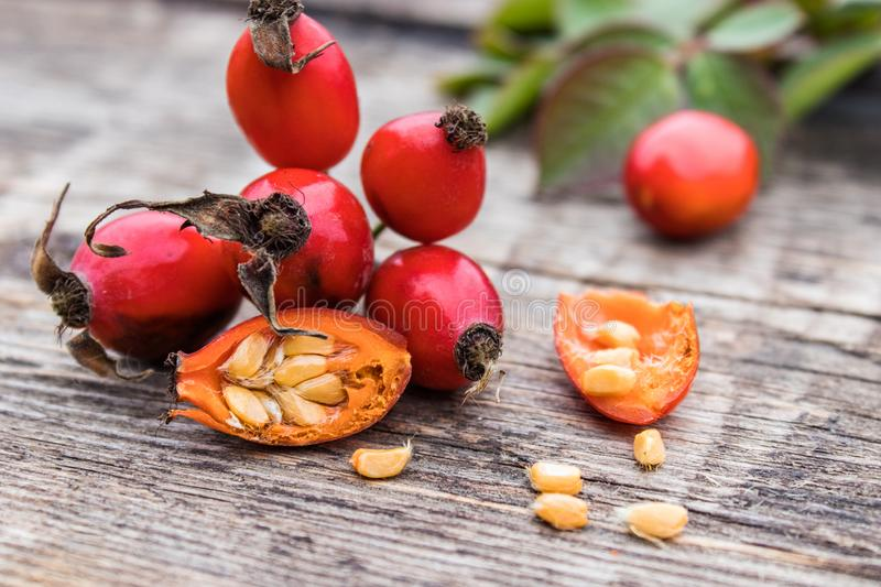 Red rosehips and cut berries in half with seeds on a wooden table stock photos