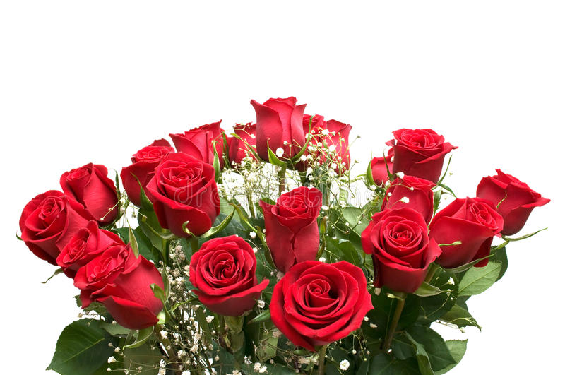 Download Red Roses. Royalty Free Stock Photo - Image: 11291175