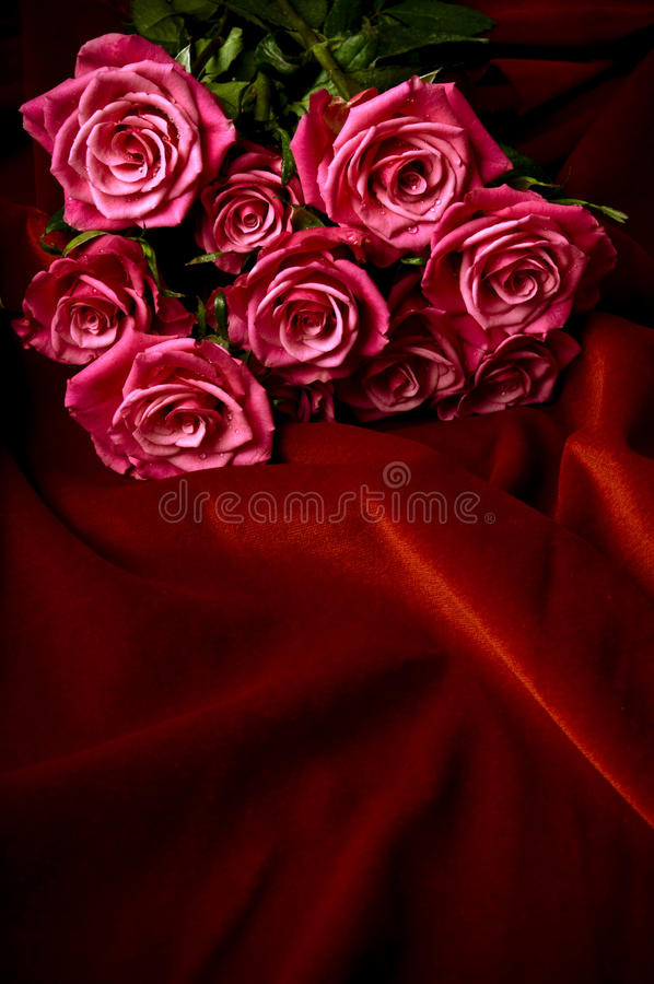 Download Red roses stock image. Image of copy, romance, passions - 12687723