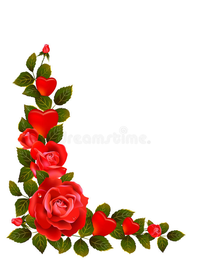 Red roses royalty free illustration