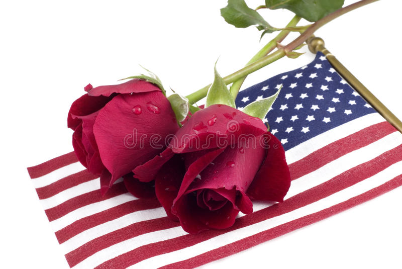 Red Roses on American Flag stock photography