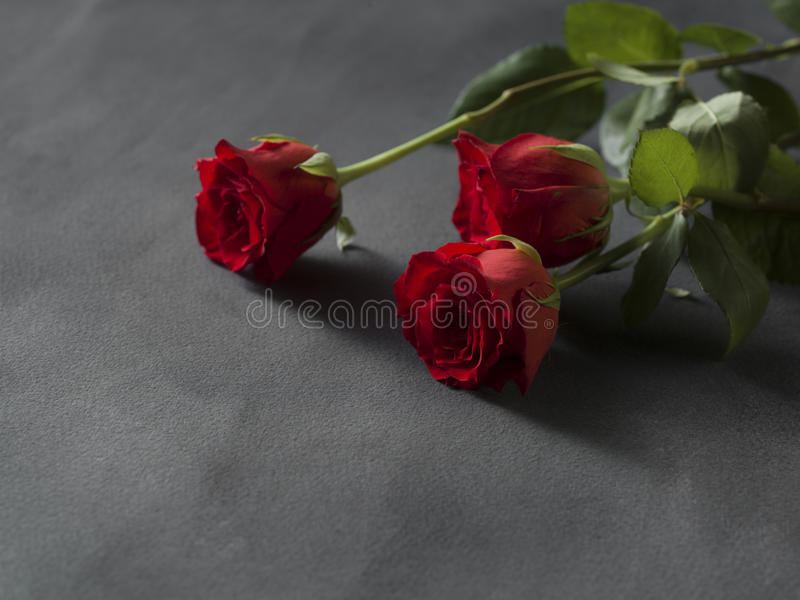 Red roses arrangement for a funeral grey stock image