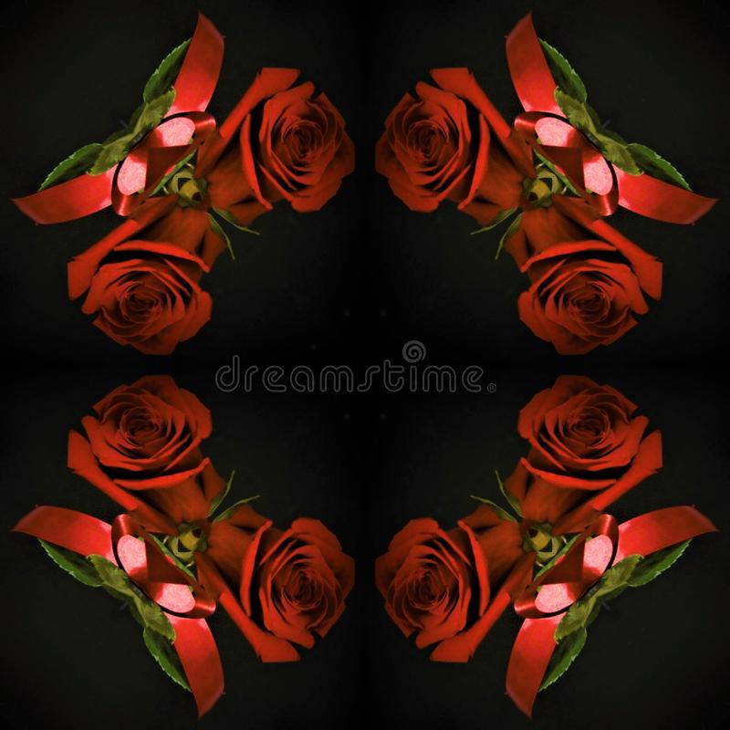 Red roses on a black background in an old bottle stock photos