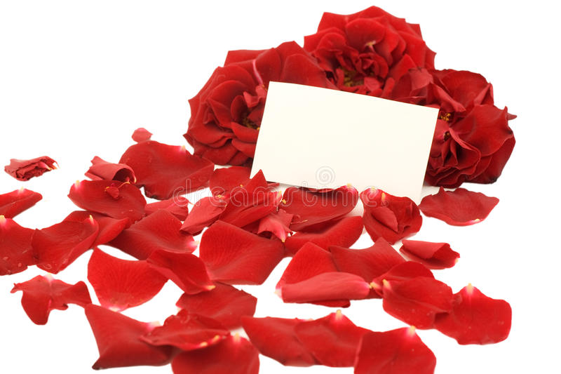 Download Red Roses With A Blank Note Stock Photo - Image: 21100066