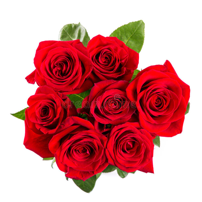 Red roses bouqet isolated on white. Red roses bouquet isolated on white background stock photos