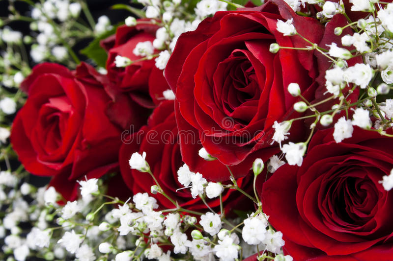 Red Roses Bouquet Stock Photo Image Of Breath Wedding