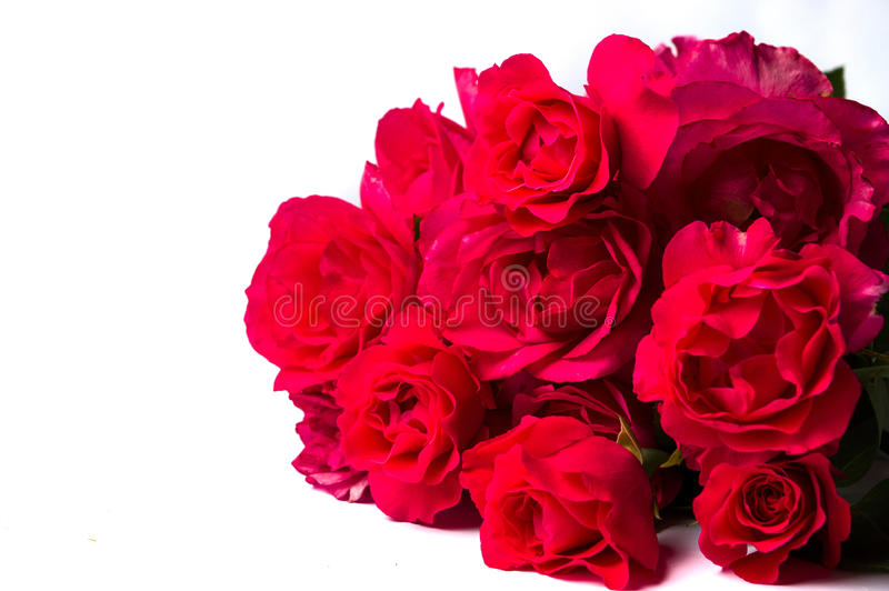 Red roses bouquet isolated on white stock images